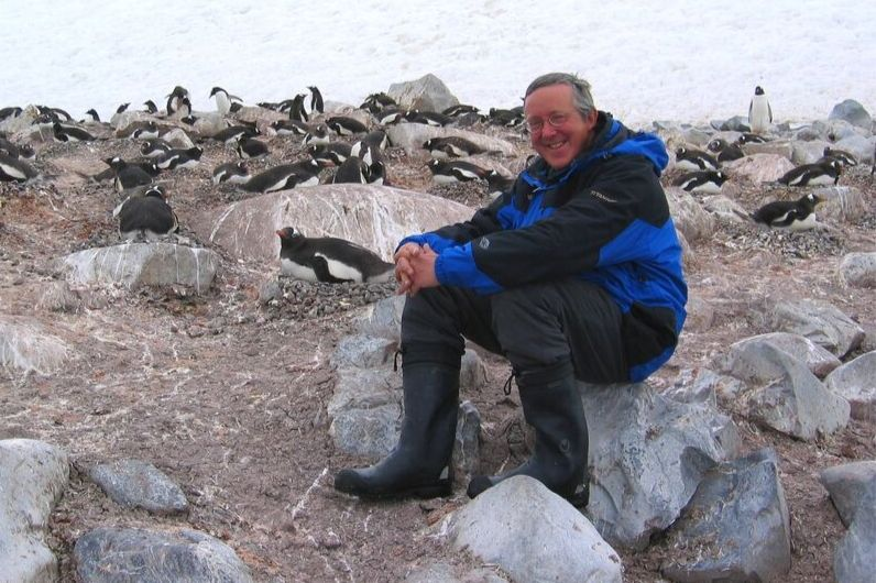 a man sitting on the rocks with penguins