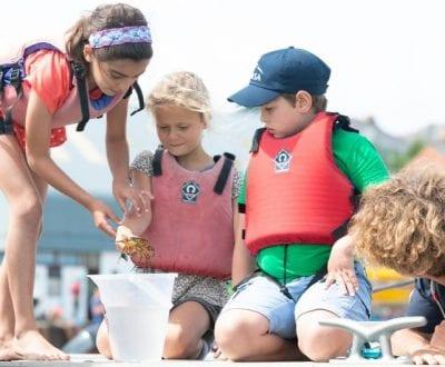 A group of children crabbing